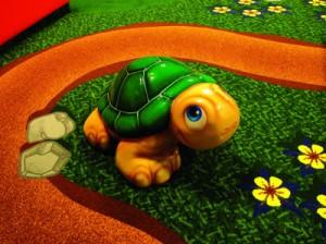 Turtle_fs-300x224.jpg